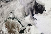 Morze Beringa - kra lodowa