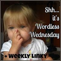 http://www.nannytomommy.com/2015/06/summer-fun-wordless-wednesday-linky.html
