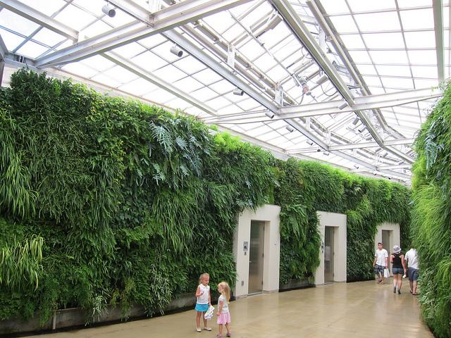 A maior parede verde da América do Norte