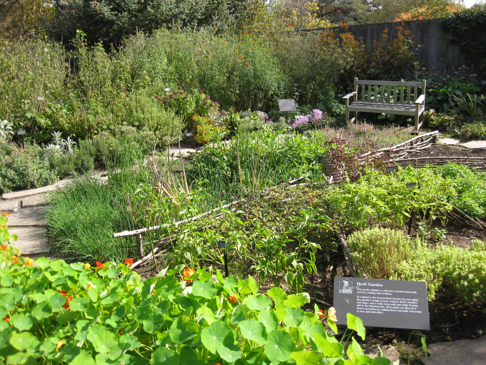Think global garden local fall at the chicago botanic garden for Local landscape gardeners