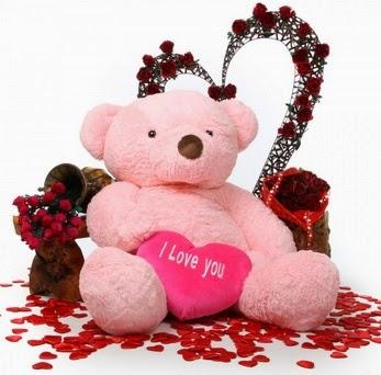 Valentines day 2015 Teddy Bear