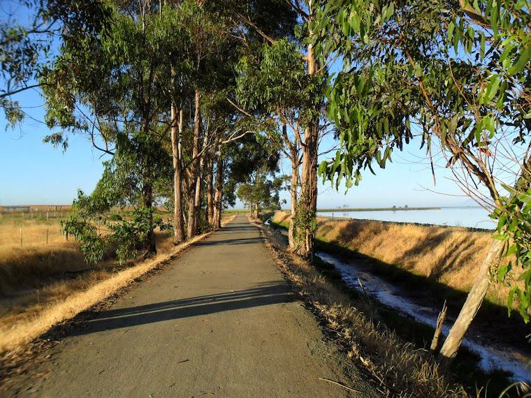Hike Napa