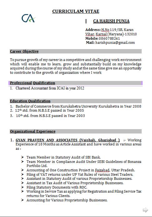 accountant resume in word format Parlobuenacocinaco