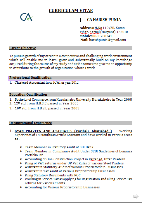 Download Accounts Resume Format In Word