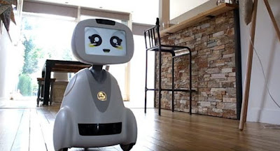 Buddy adorable robot