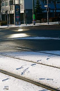 Rails de Tram berlinois sous la neige