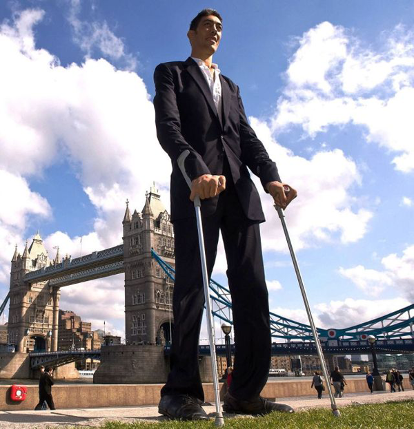 10 tallest man on earth living celebrity heights how