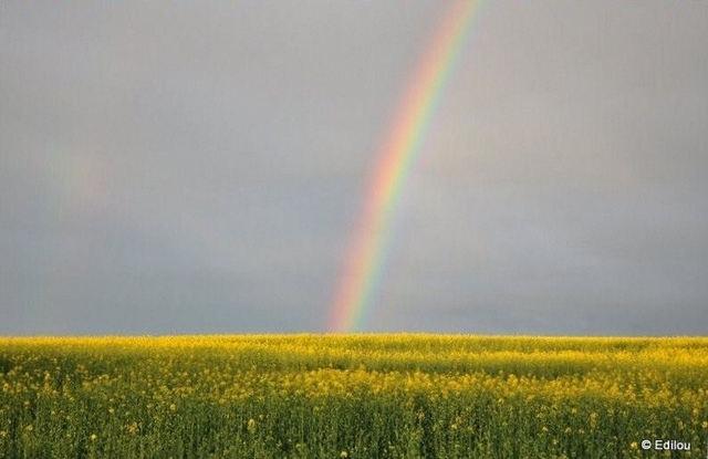 au-delà de l'arc-en-ciel, beyond the rainbow, за радугой