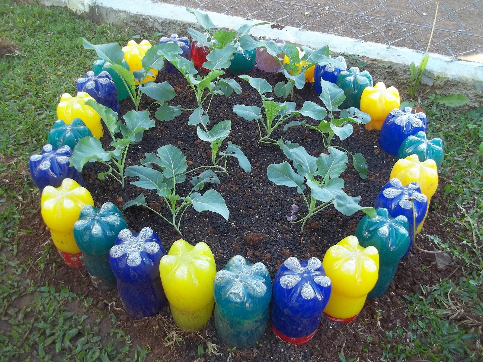 Primeiros passos mini horta com material recicl vel - Como reciclar para decorar ...