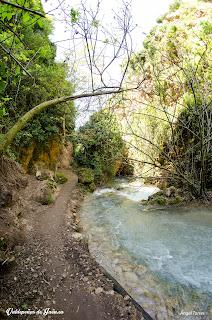 El Rio Vadillo a su paso por el paraje