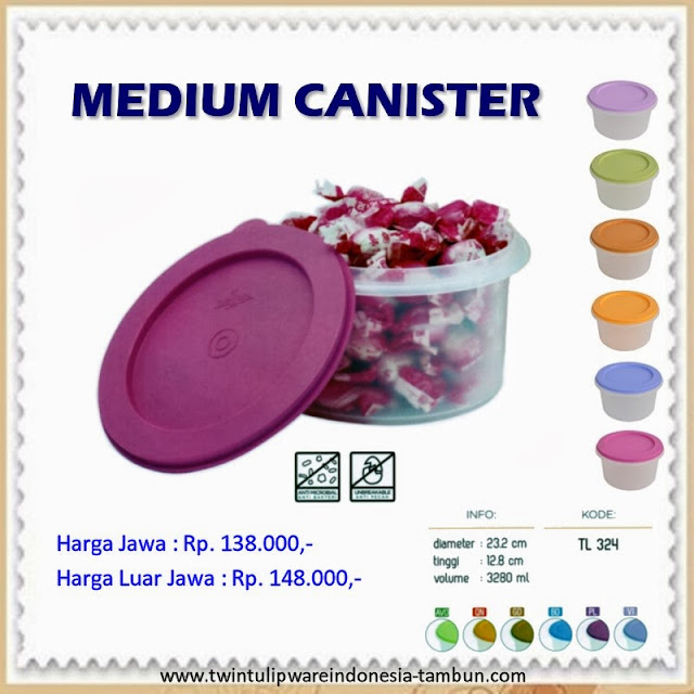 Medium Canister Tulipware 2013