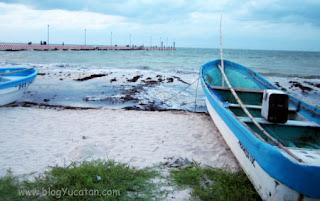 Playas Yucatan Chicxulub