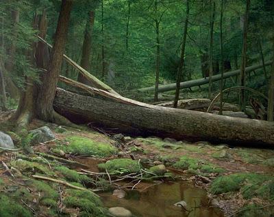 paisajes-pinturas-oleos