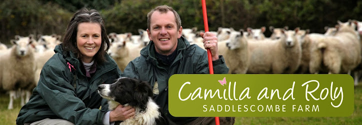 Camilla and Roly at Saddlescombe Farm