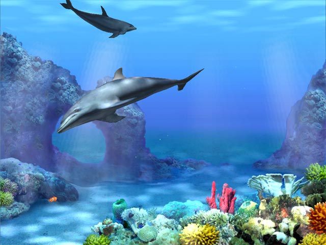 3d Fish Screensaver4