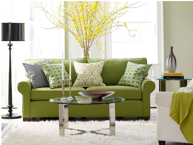Living room design ideas with green sofa photo