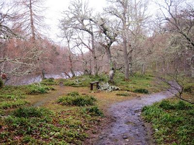 Deeside Walks: the path from Ballater goes along the River Dee