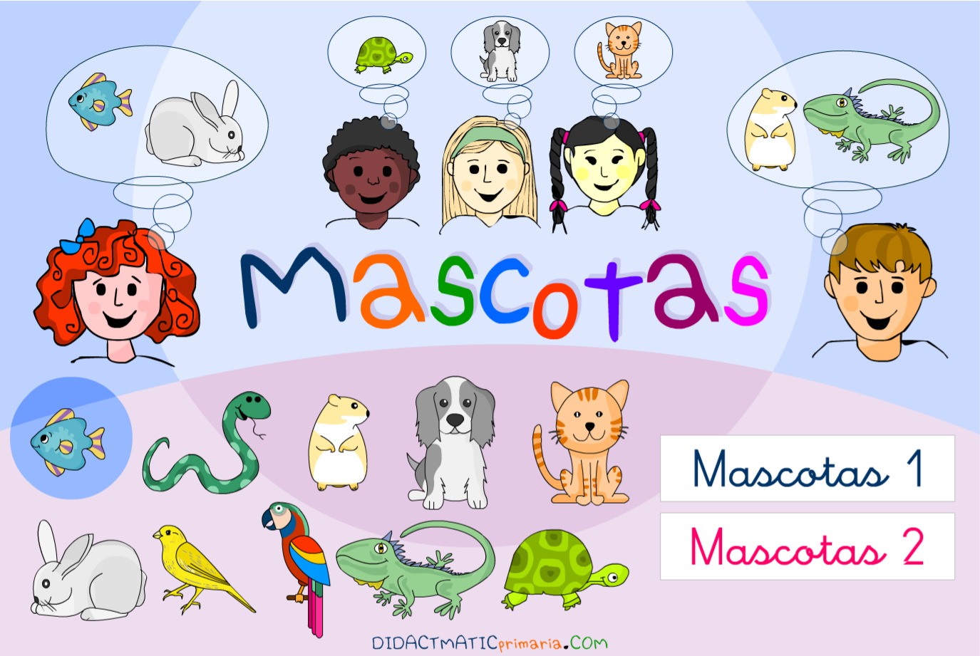 Mascotas
