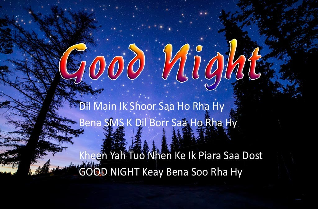 Good Night Messages For Lover In Hindi | Poetry About Wishes Festivals