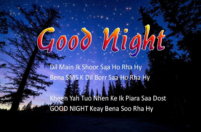 Good Night Messages For Lover In Hindi