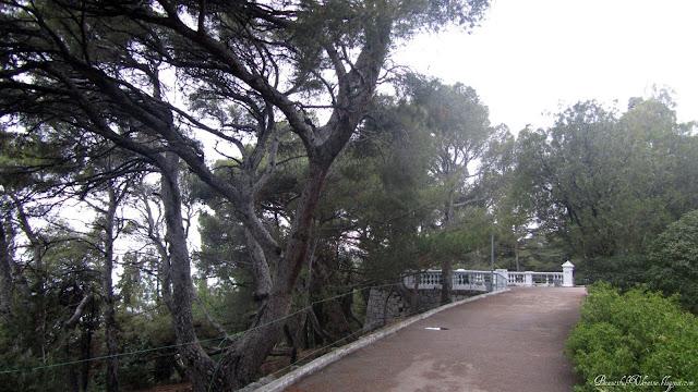 Форосский парк