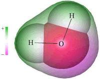 Molekul yaitu