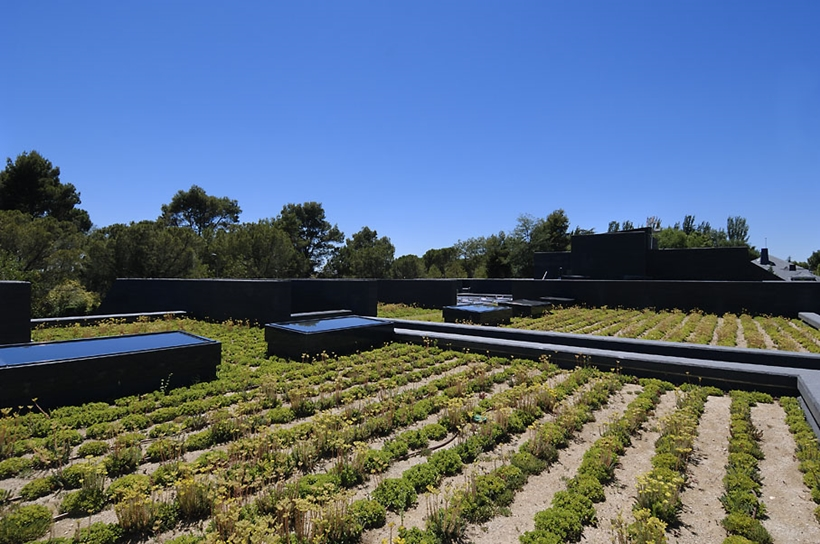 Green roof on Ultra Modern Concrete House by A-cero Architects