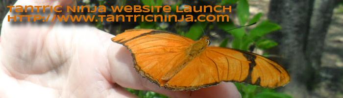 http://www.tantricninja.com