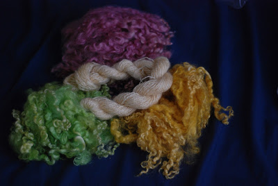 Dyed Wensleydale longwool locks and spindle-spun handspun yarn