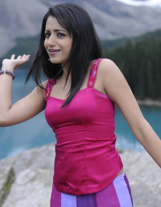 trisha in guard movie pink dress shoot song , cute stills