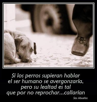 webos_perros.jpg