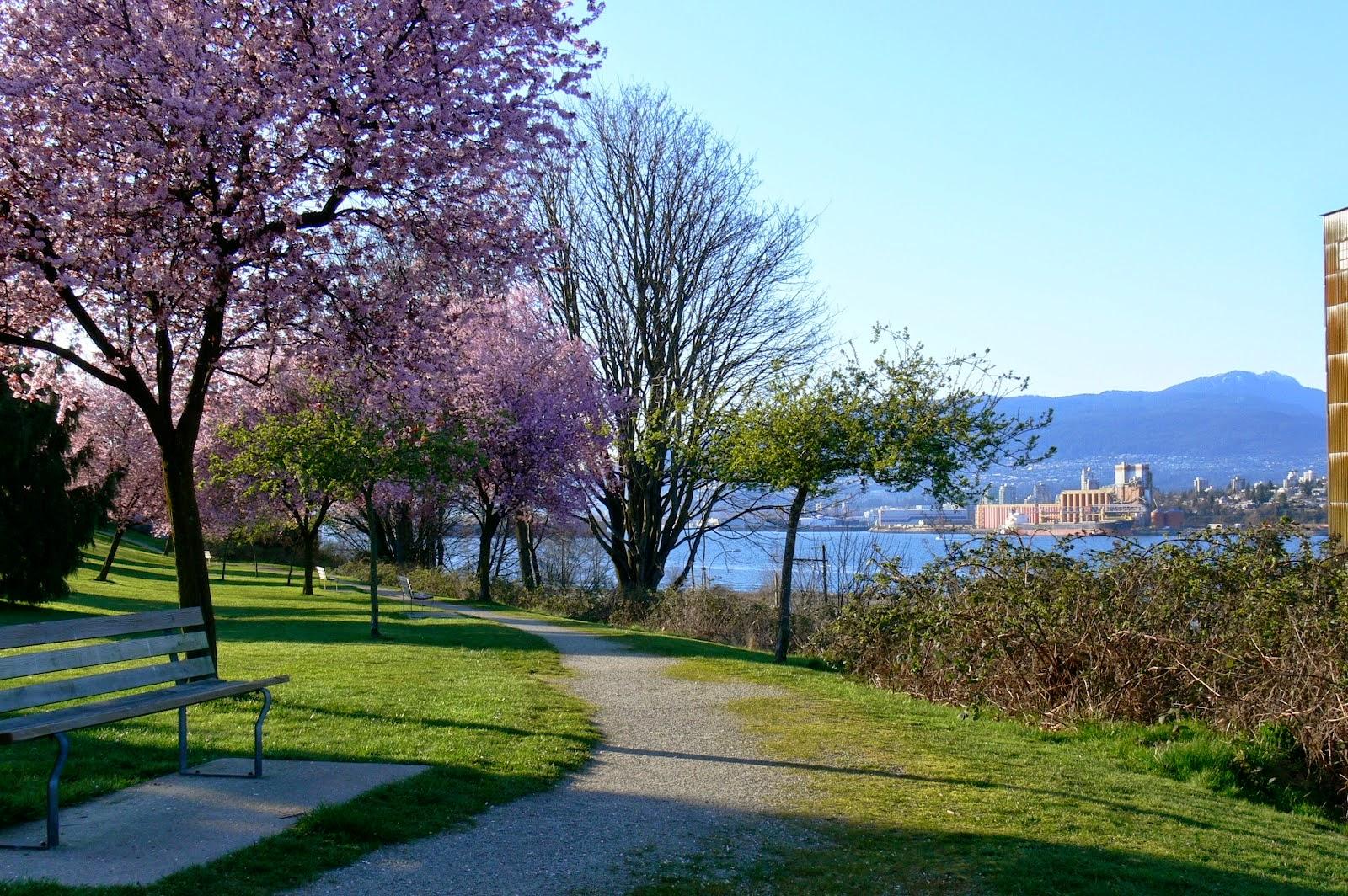 Rutas de senderismo en el Parque Stanley, Vancouver