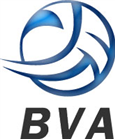 Balkan Volleyball Association BVA