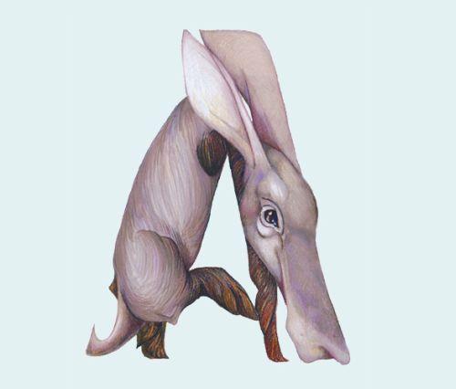 casey girard adoráveis animais alfabeto