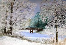 Winterlandschap van he t Westerpark in Zoetermeer