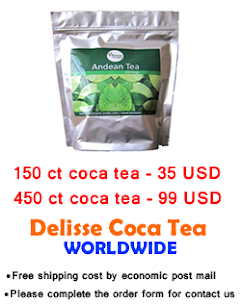 Mate de coca or Coca tea