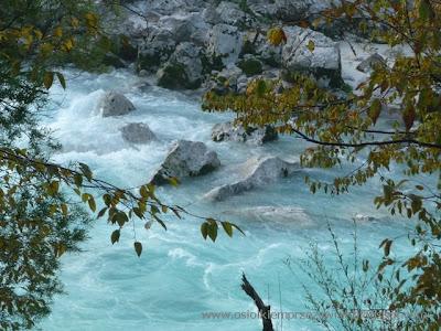 http://osiolkiemprzezswiat.blogspot.com/2012/01/bakany-osiokiem-sowenia.html