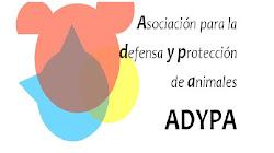 ADYPA