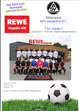 """Stadionzeitung """"Elstern-Post"""""""
