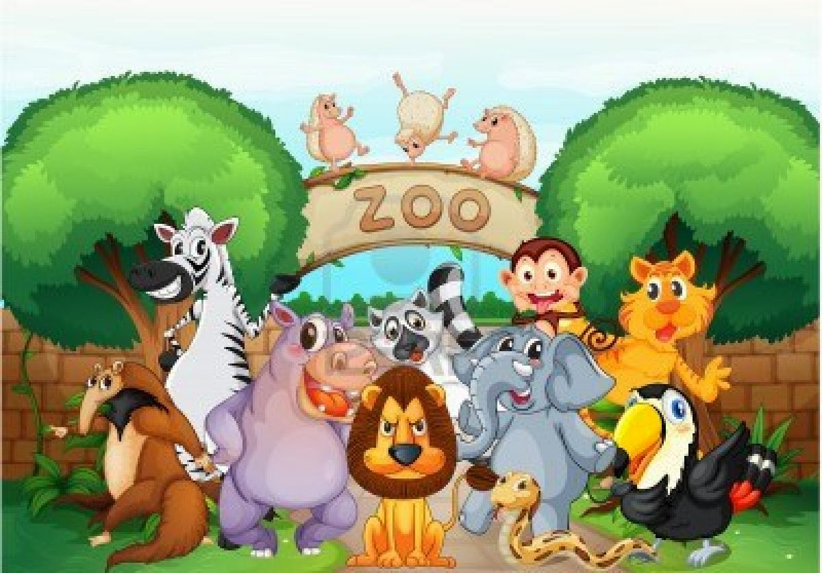 A Visit to a Zoo English essay