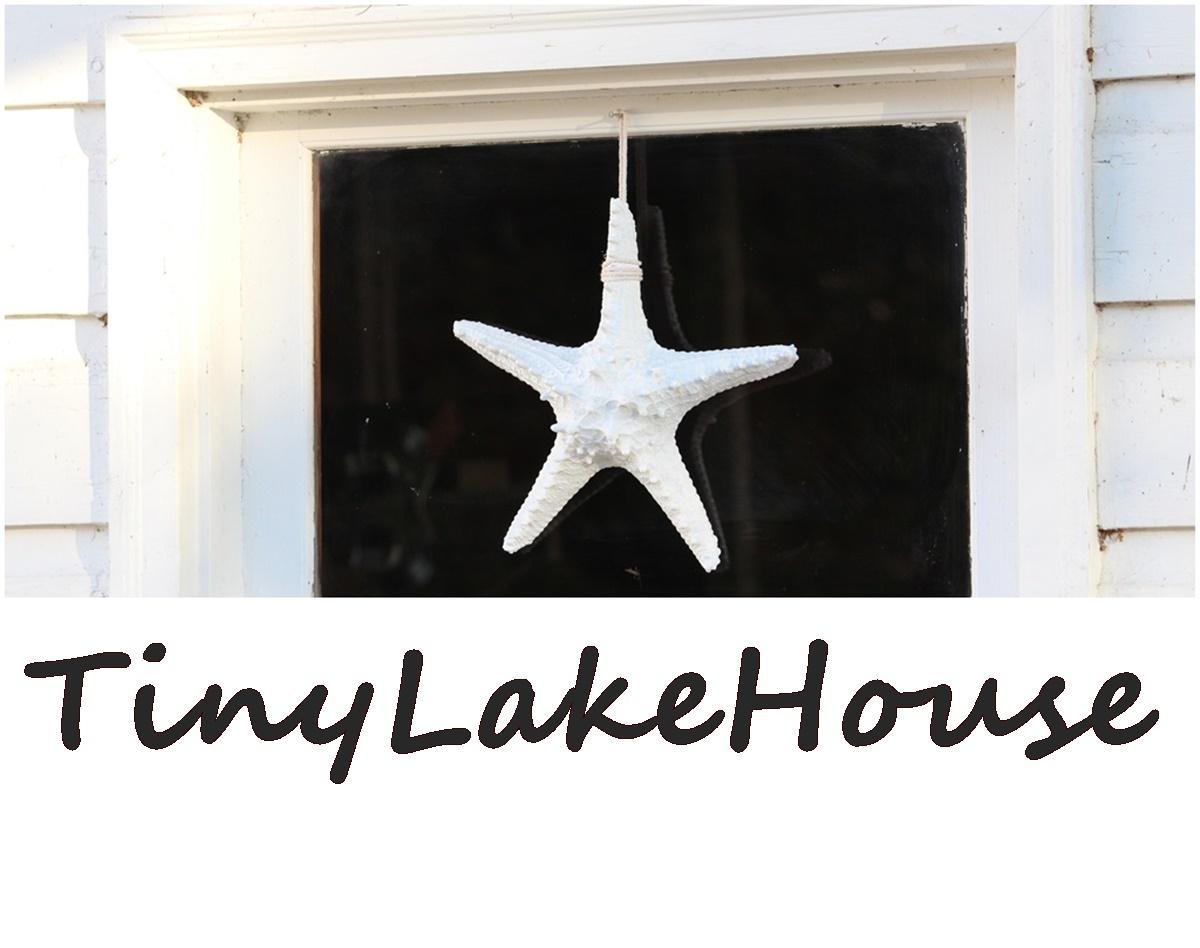 TinyLakeHouse