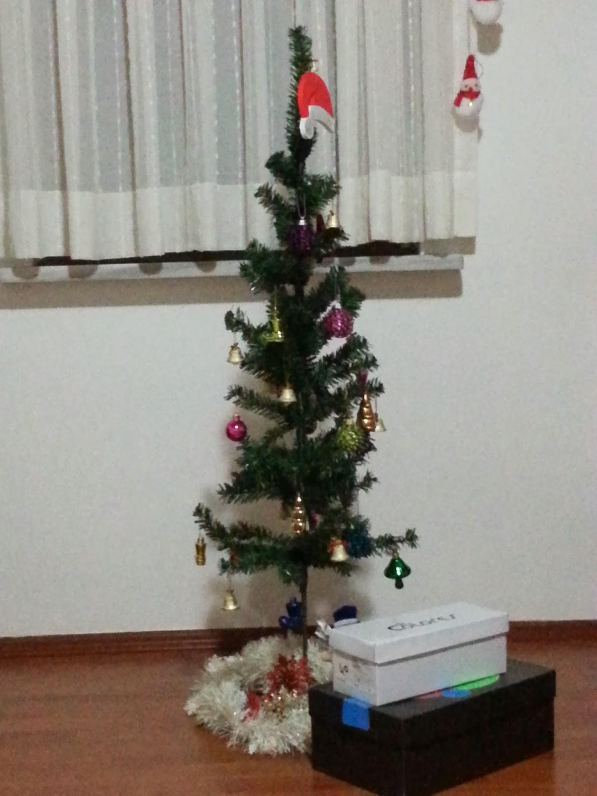 Ana dersin bir Noel kaz