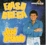 Flash Brega