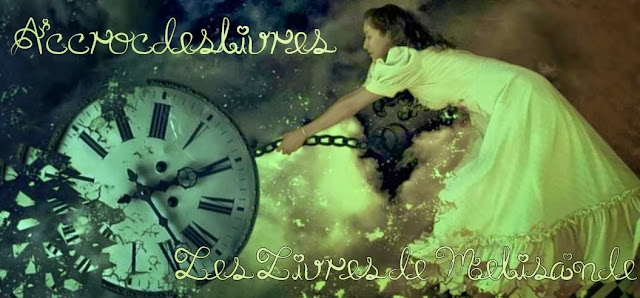 http://accrocdeslivres.blogspot.fr/