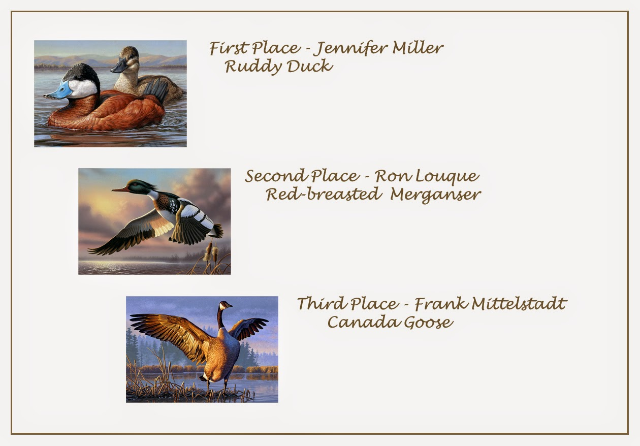 As A Follow Up To Yesterdays Posting About My Participation In The Judging For This Years Federal Duck Stamp Competition Late Last Week I Wanted Post