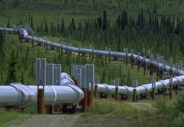 pipeline transport Wolverine pipeline transport is a reliable flatdeck trucking services company to the oilfield and remote locations visit us at wolverine pipeline transport for transportation safety services for productivity and proficiency of your set up in canada call us right now.