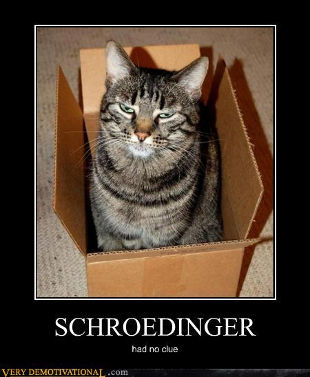 Topics in Math and Physics: Schrodinger's Cat