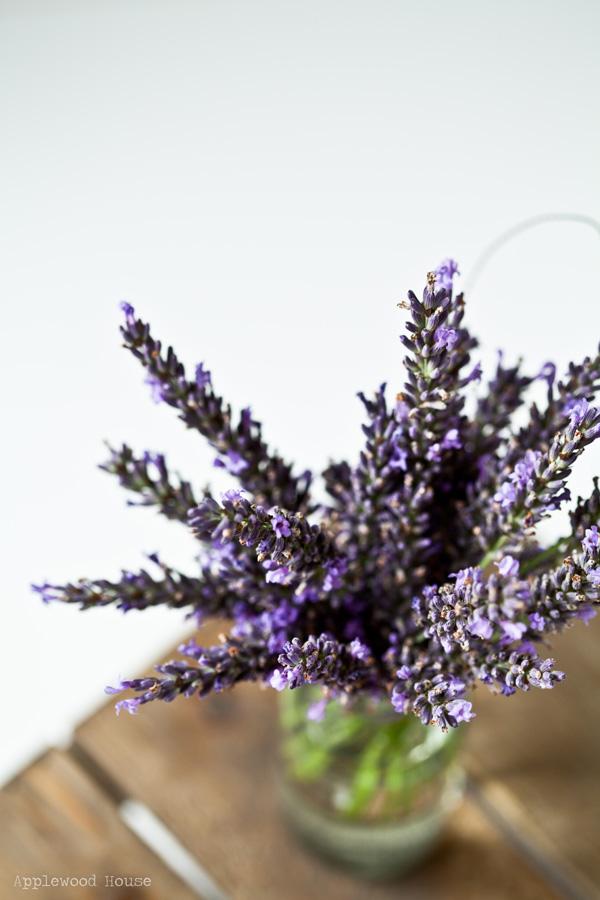 Lavendel Strauß Blumenstrauß Garten