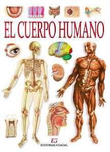 EL FUNCIONAMIENTO DEL CUERPO HUMANO