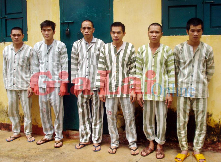 Công an huyện Mang Yang: Bắt giữ nhiều đối tượng mua bán chất ma túy